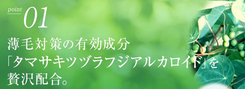AYAKAMI(アヤカミ)ポイント1