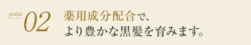 AYAKAMI(アヤカミ)ポイント2