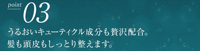 AYAKAMI(アヤカミ)ポイント3