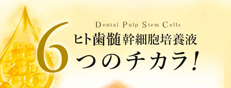 REプラセンタ歯髄ヒト幹細胞